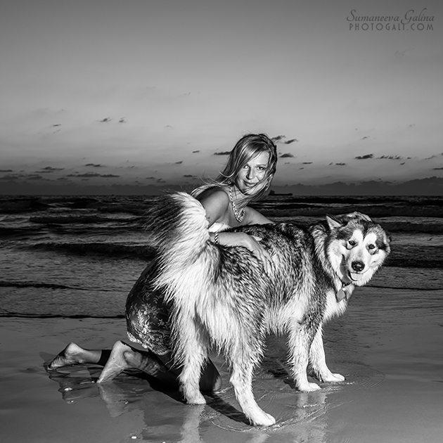 Фотографии беременности с собакой